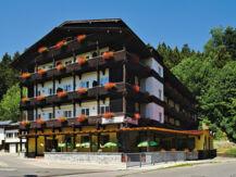 HOTEL AM STEINBACHTAL Bad Kötzting